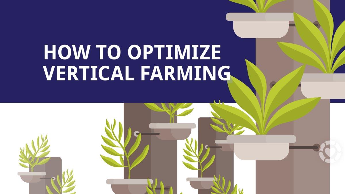 Optimizing Vertical Farming [Visual] | ecogreenlove