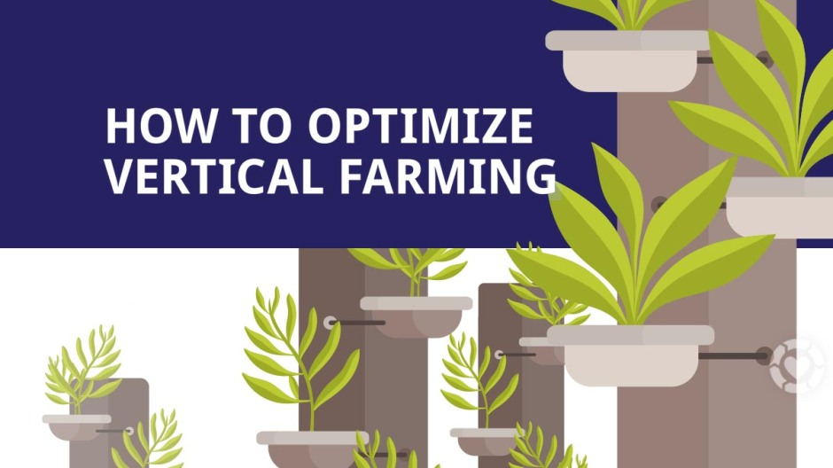 Optimizing Vertical Farming [Visual] | ecogreenlove