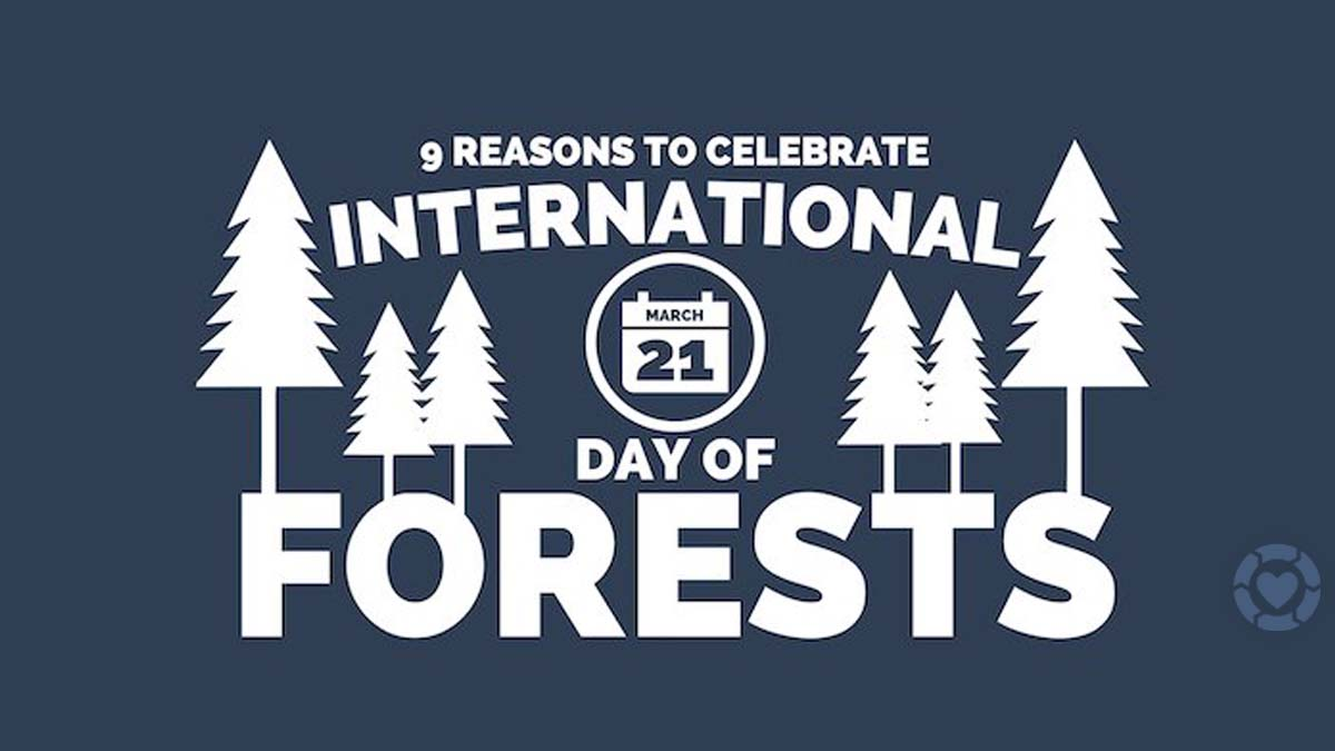 International Day of Forests 2021 [Visual] | ecogreenlove