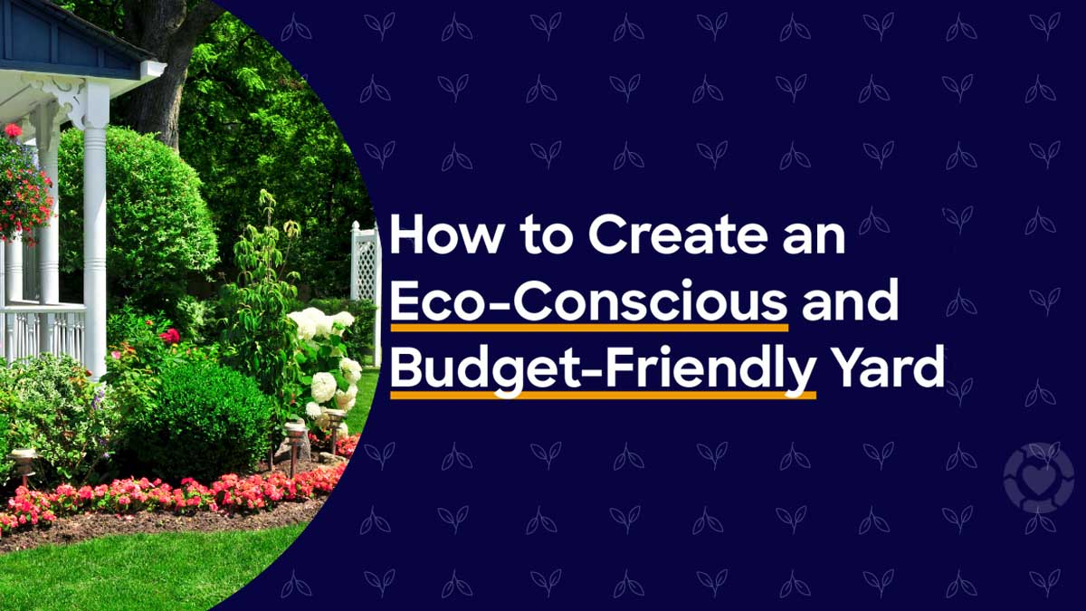 Easy, Eco-Friendly Landscaping: What to Know [Infographic] | ecogreenlove