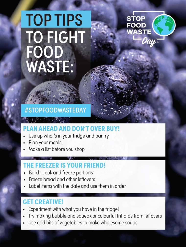 Top Tips to Fight Food Waste | ecogreenlove