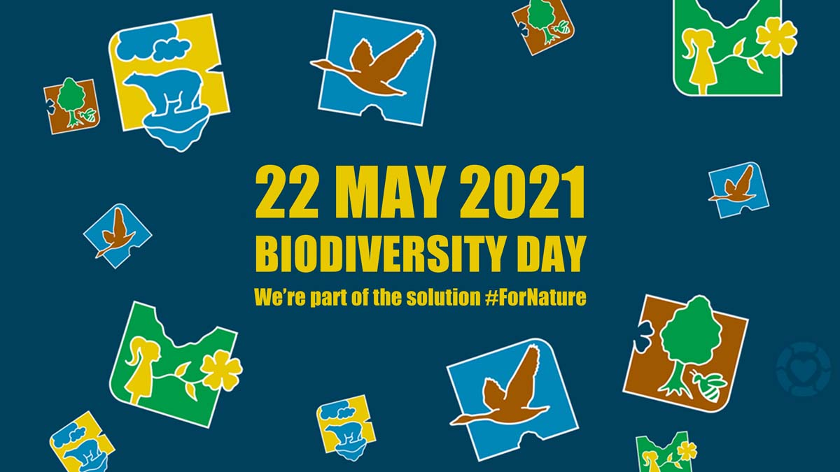 Biodiversity Day: We're part of the Solution | ecogreenlove