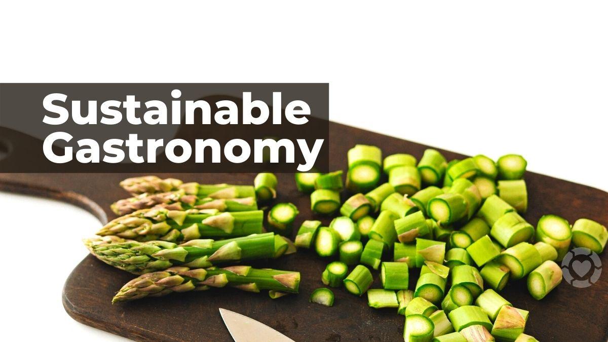 Promoting Sustainable Gastronomy [Visual]   ecogreenlove