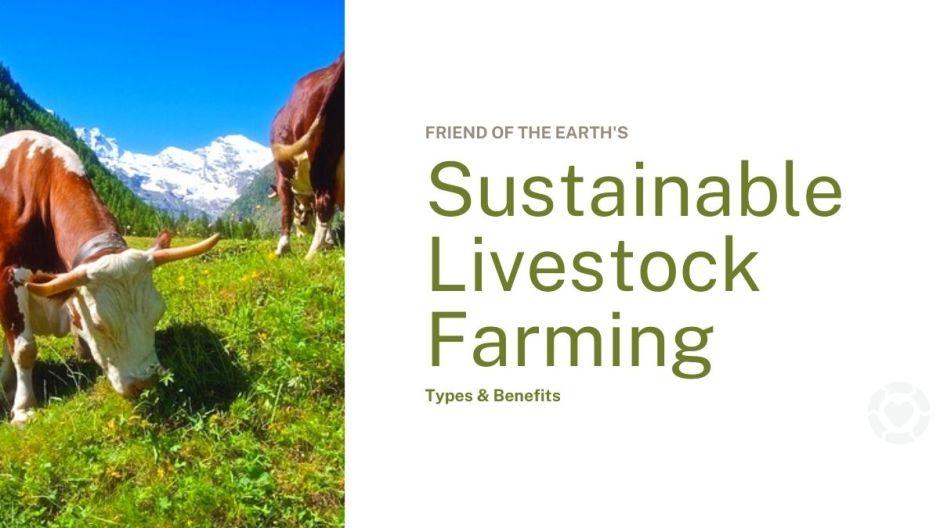 Sustainable Livestock Farming: Types & Benefits