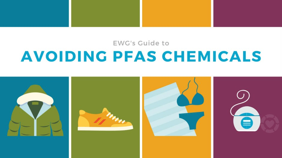 EWG's Guide to Avoiding PFAS Chemicals [Visual] | ecogreenlove