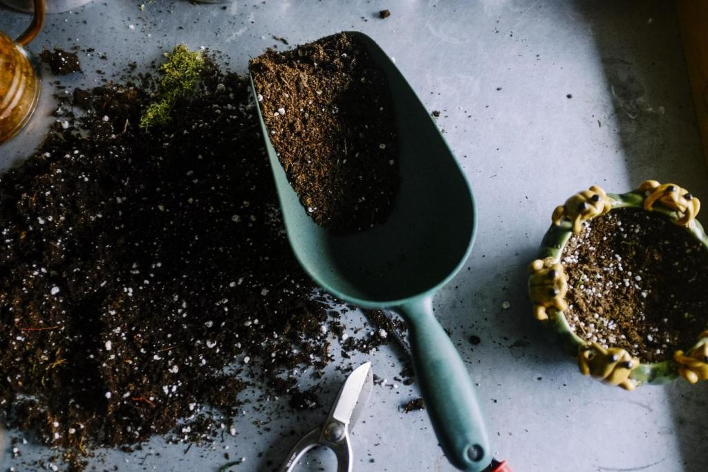 Tips on Cultivating a Year-Round Eco-Friendly Garden   ecogreenlove
