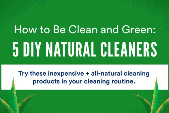5 DIY Natural Cleaners [Visual] | ecogreenlove