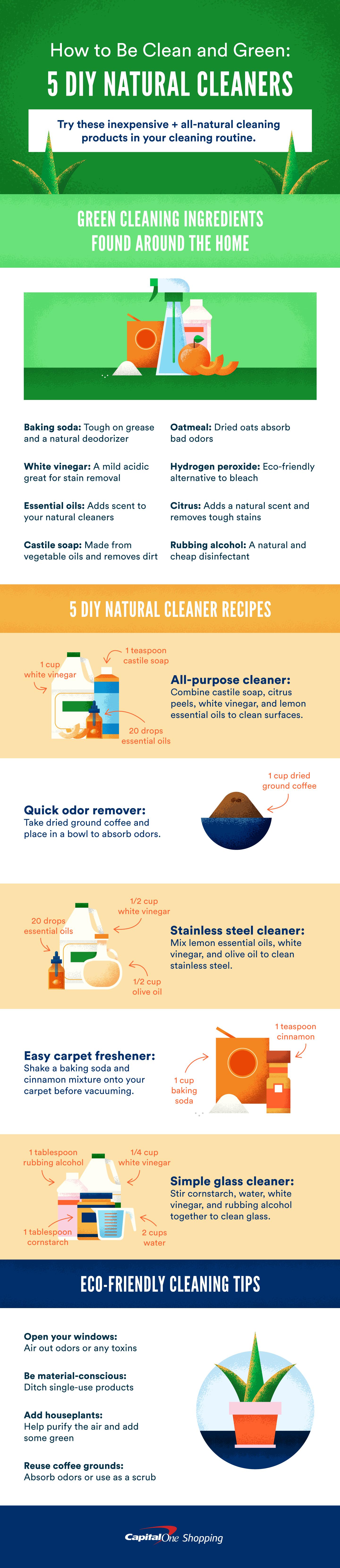 5 DIY Natural Cleaners [Visual]   ecogreenlove