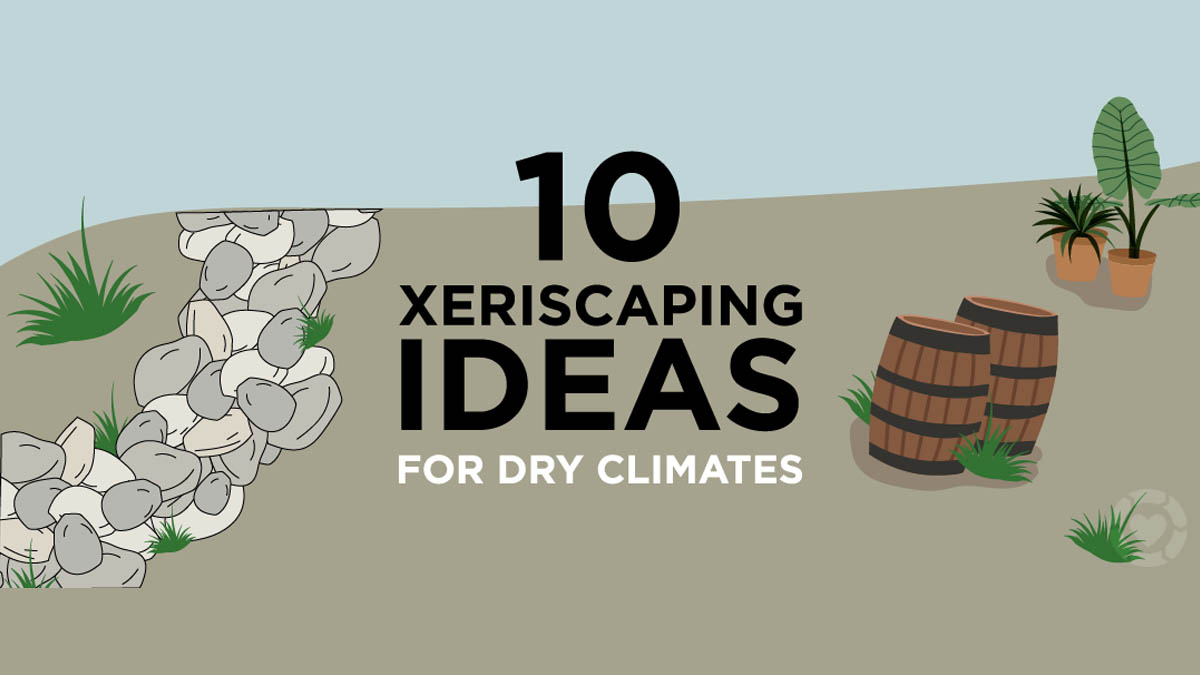 10 Xeriscaping Ideas for Dry Climates [Visual] | ecogreenlove