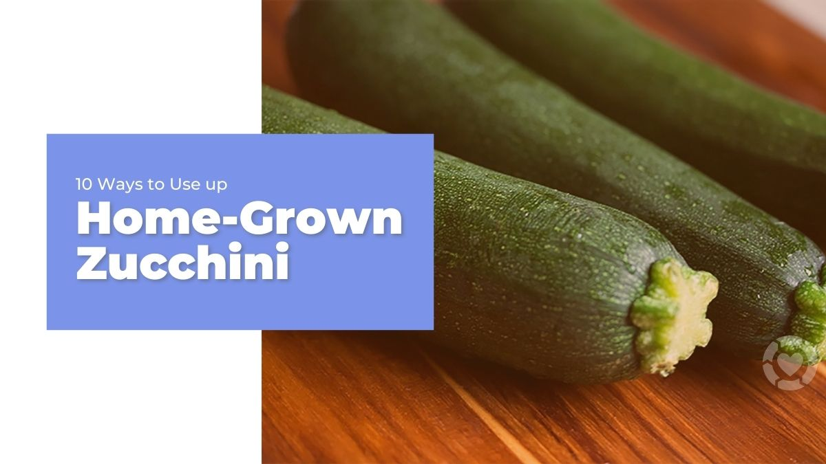 10 Ways to Use up Home-Grown Zucchini | ecogreenlove
